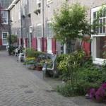 Geveltuinen….ook in Roermond?